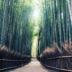 La rentrée : 3 exercices de sophrologie pour augmenter son énergie
